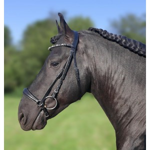 383 HB Showtime drop noseband